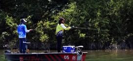 秋季作钓鲈鱼会真的那么简单吗?水温和水体很重要