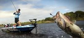 大水域的路亚作钓技巧及鱼类的特性分析