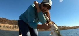 路亚视频:泳饵-swim bait